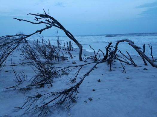 Dusk Oak Island beach