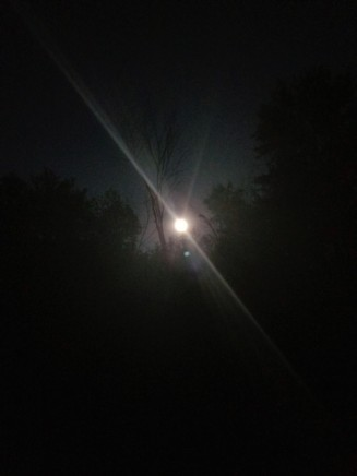 Full moon pic