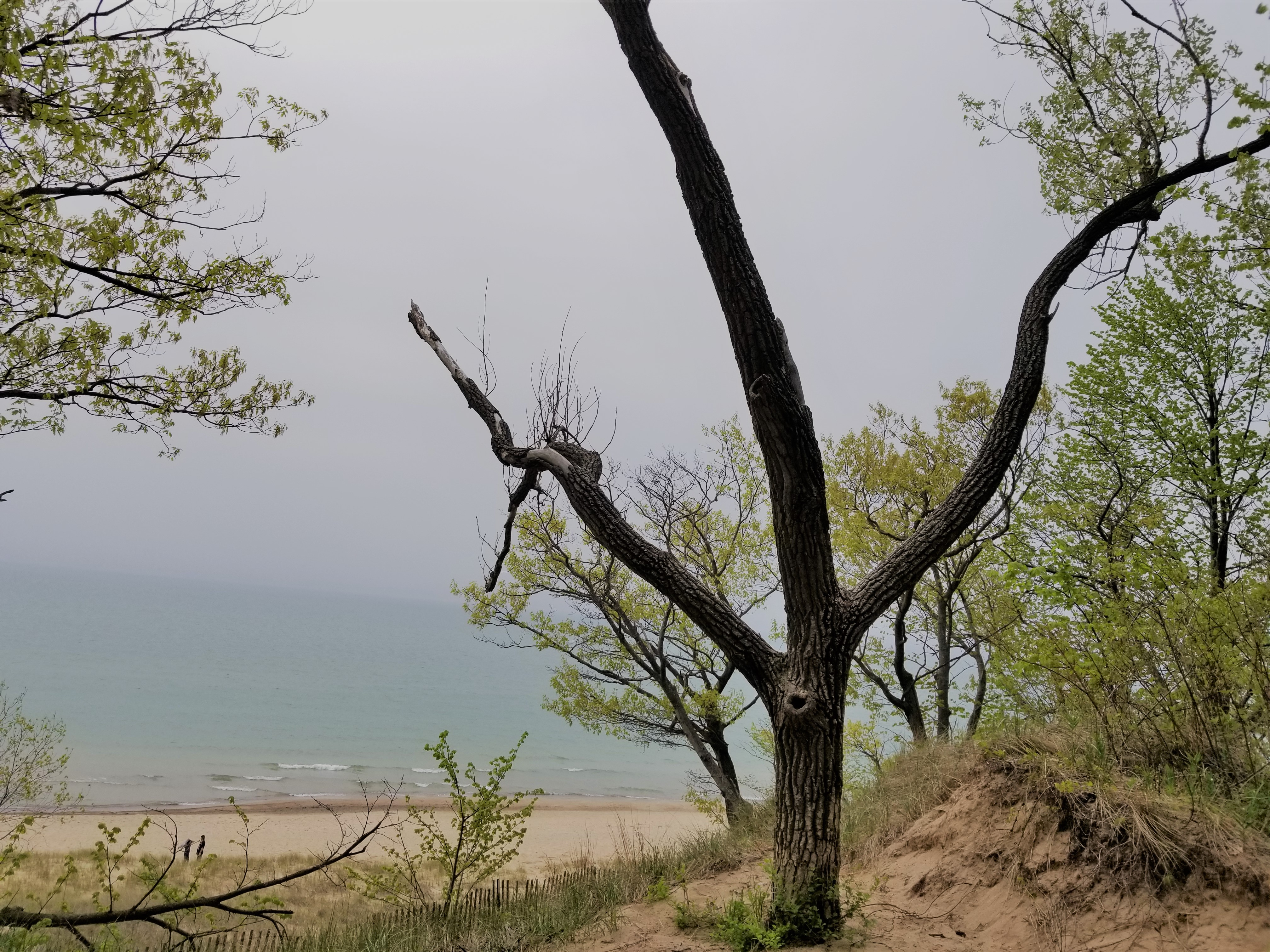 IN dunes lake michigan
